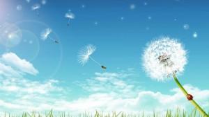 spring_breeze-1519710